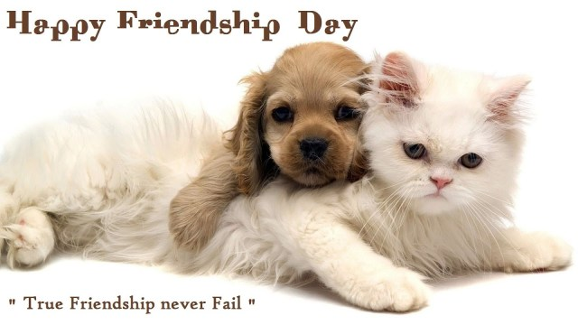 friendship day lovely cute images 2015