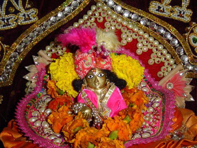 laddu-gopal Images