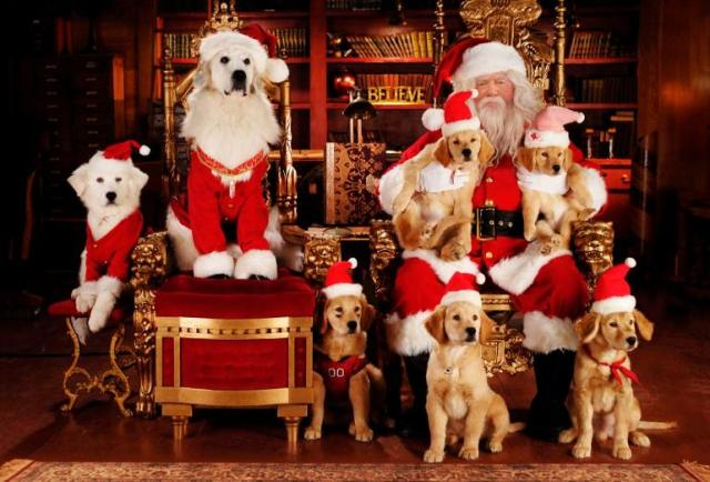 santa claus cute images merry christmas 2015
