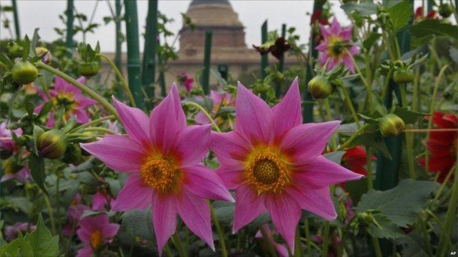 Mughal Gardens 2016 Timings