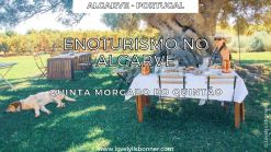 Enoturismo no Algarve - Quinta Morgado do Quintão enoturismo