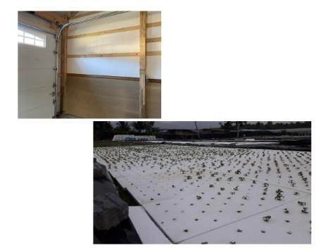 Polystyrene Foam Insulation Home Resized