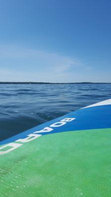 Chasing porpoises