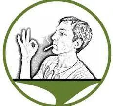 Bild: Logo Hanfbob