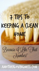 7 tips to Keeping Your Home Clean