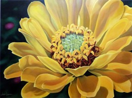 Yellow Zinnia (2014) 90x120 cm AVAILABLE