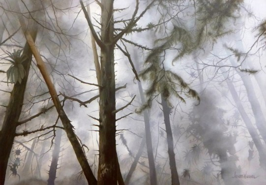 Trees and Fog (2016)