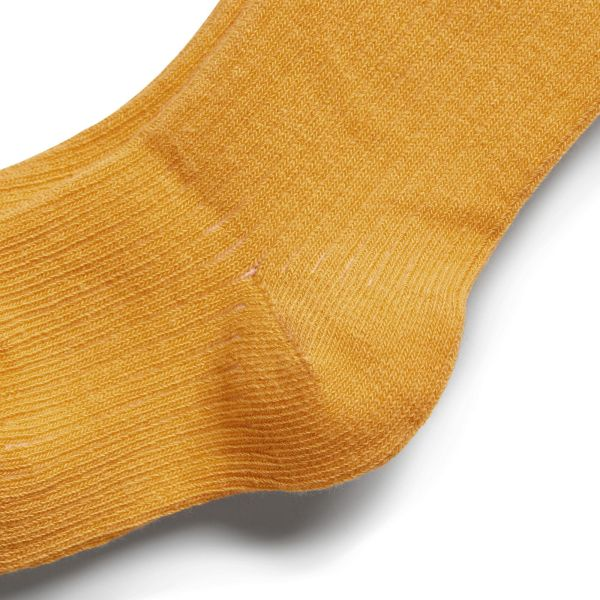 Wilson and Frenchy Tights (golden apricot)