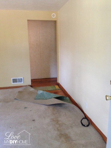 Foreclosed Home Renovation {Love My DIY Home}