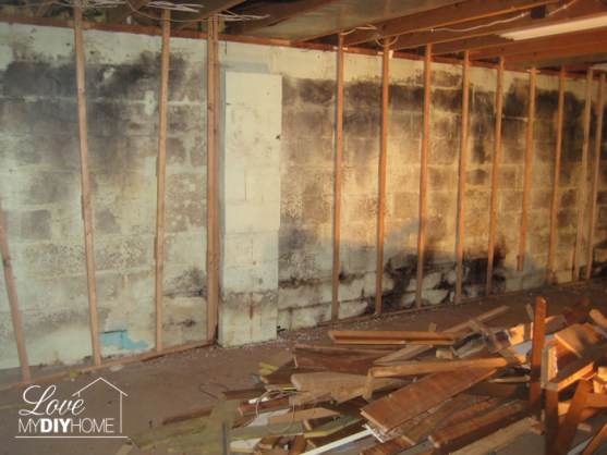 Basement Reno - You never know what is behind those walls!