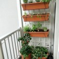 Balcony Gardens {Love My DIY Home}