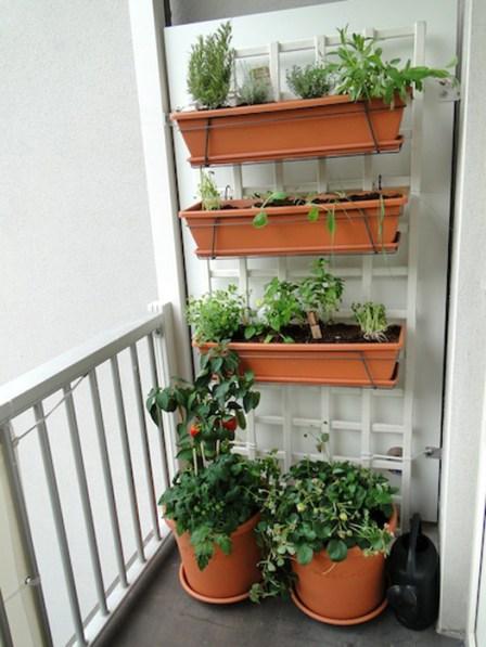 Balcony Gardens {Love My DIY Home}