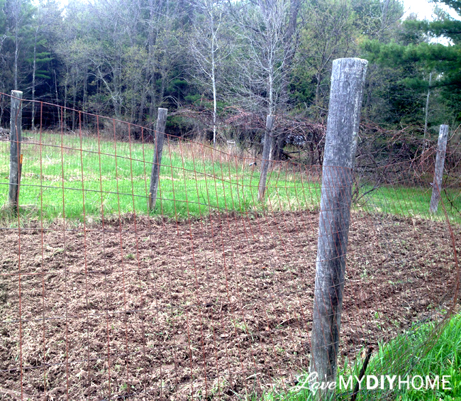 DIY Garden Fencing {Love My DIY Home}