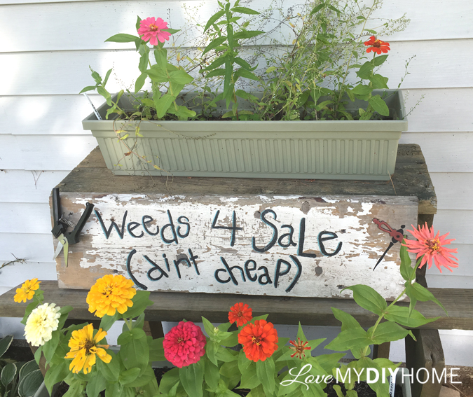 Hand Painted Garden Sign {Love My DIY Home}