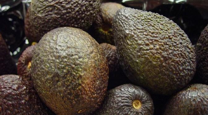 Waarom avocado eten een goede keuze is