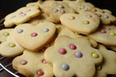 wk49 di koekjes