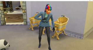 2018-11-25 09_06_12-The Sims™ 4
