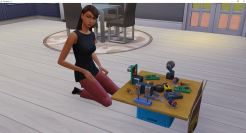 2018-12-18 19_05_47-The Sims™ 4