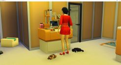 2019-01-11 21_00_25-The Sims™ 4