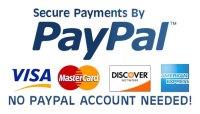 paypal-secured-alt