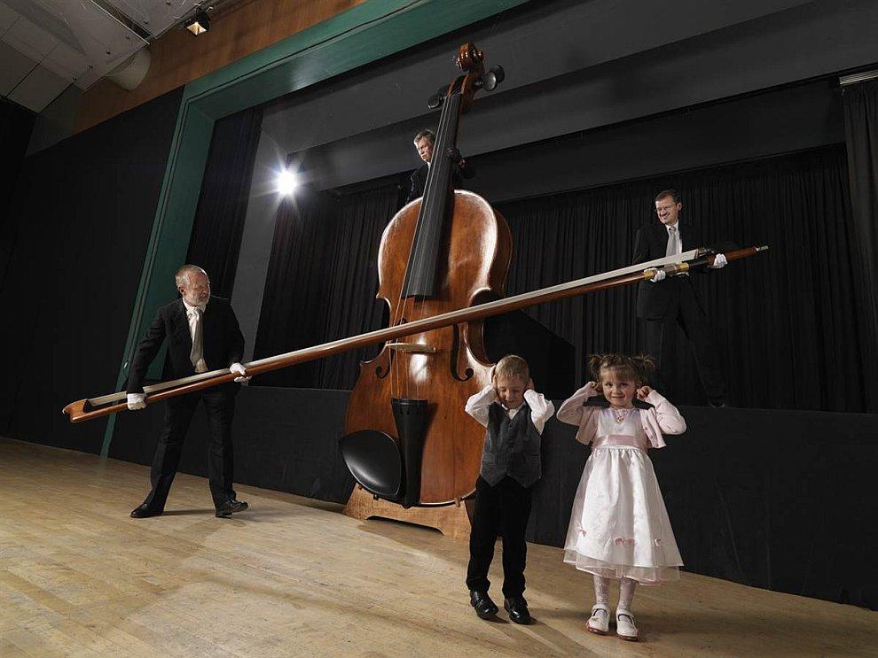 Самая большая скрипка