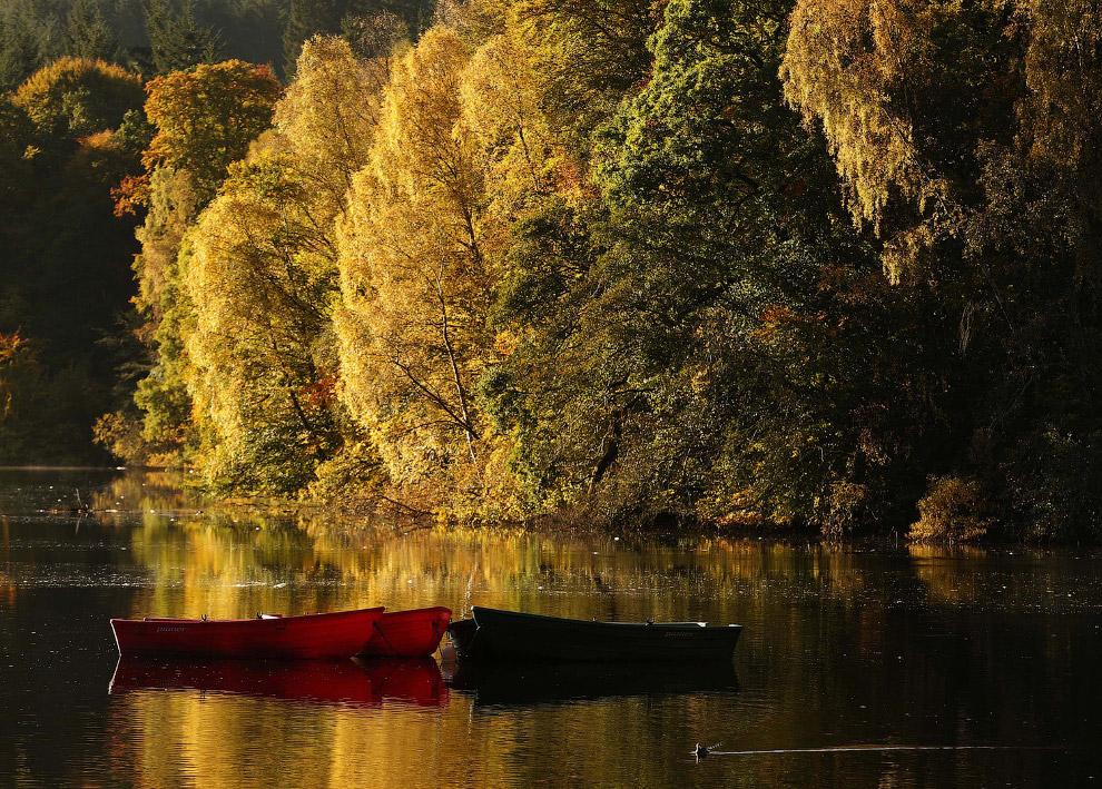 Осенняя река в Питлохри, Шотландия