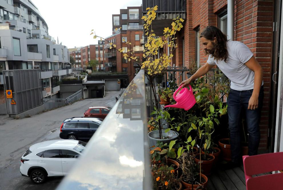Огородник-садовод на балконе квартиры в Стокгольме, Швеция