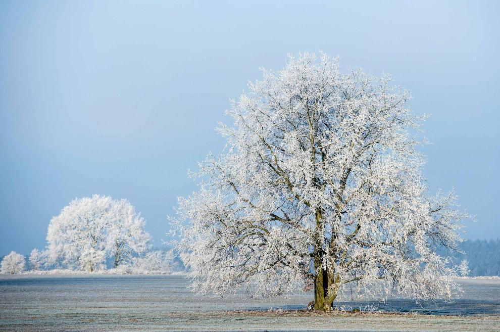 Интенсивность снегопада определяется по видимости