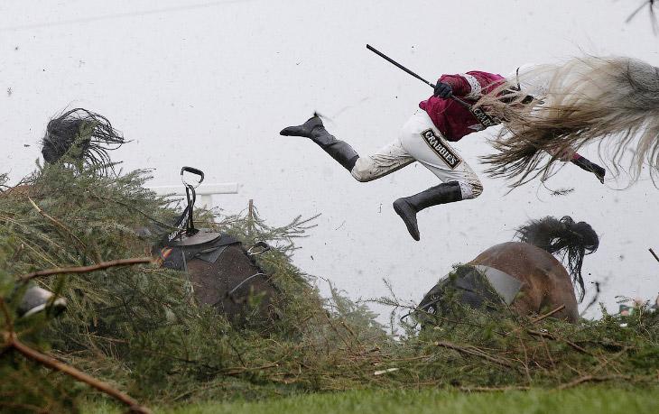 Падение с лошади во время скачек на ипподроме в Ливерпуле, Англия