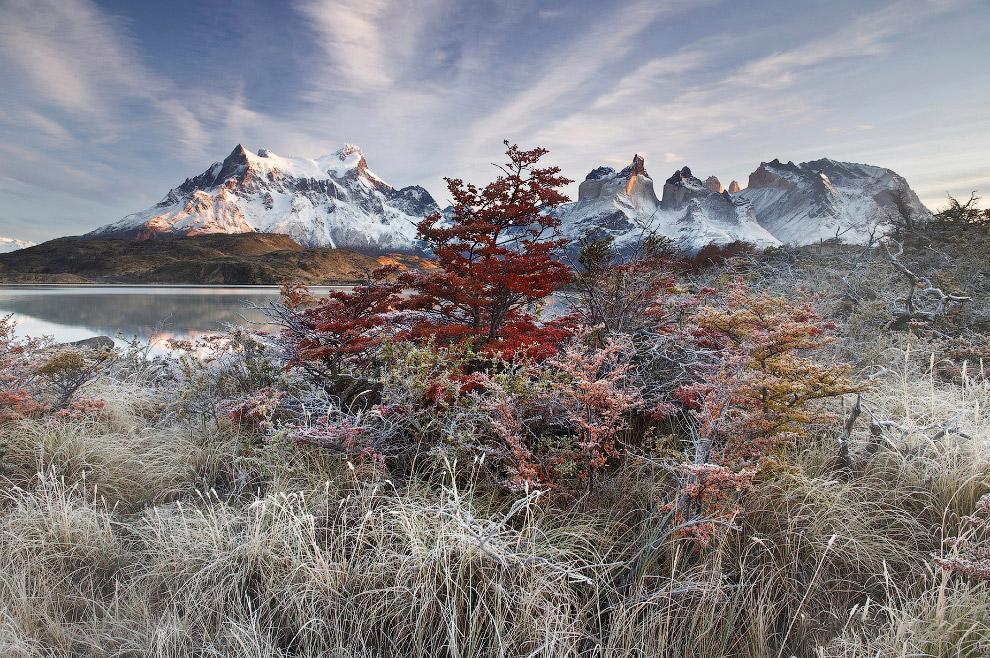 Национальный парк Торрес-дель-Пайне, Патагония, Чили