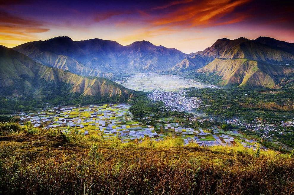 Красочные поля острова Ломбок, Индонезия