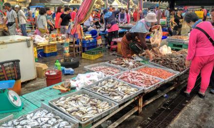 馬公(マーゴン)の魚市場は澎湖(ポンフー)で一番賑やかな場所!