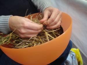 I prepare land cress seeds for bagging