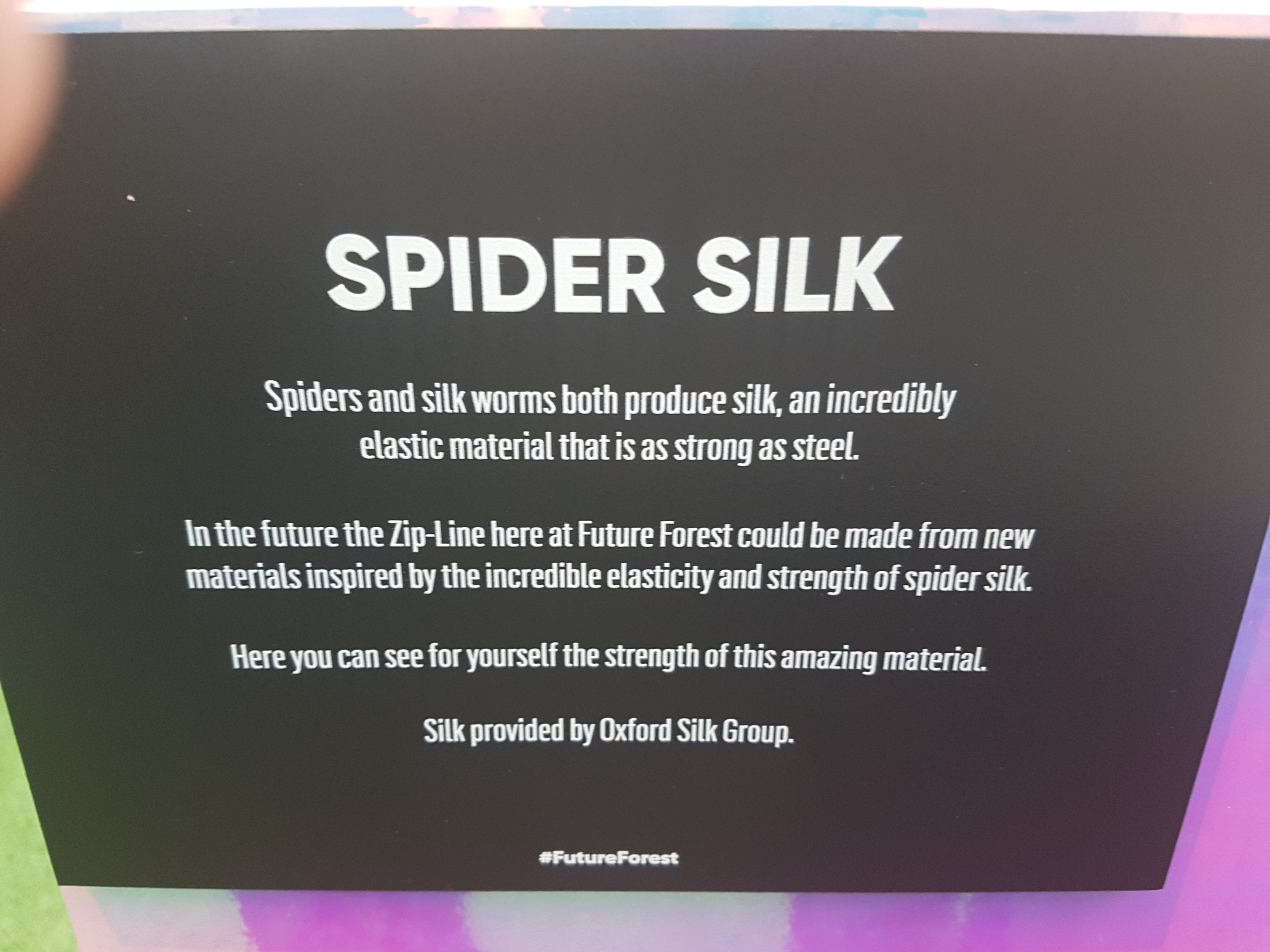 Bompas and Parr Discovering Future Forest - Spider Silk