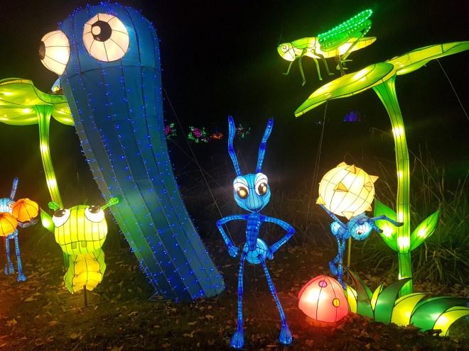 Magical Lantern Bugs Life