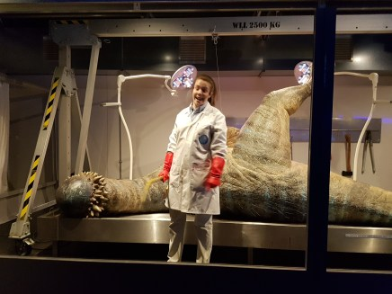 Dinos in the Wild autopsy