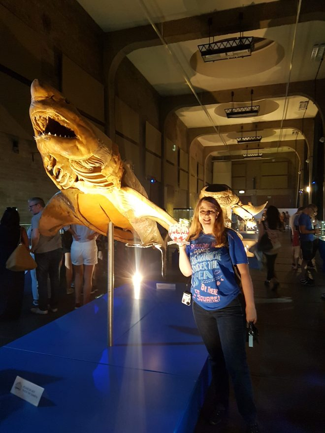 Sea Creatures me and shark