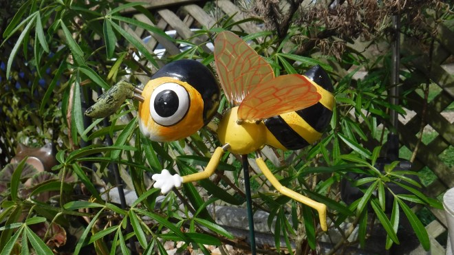 Fujifilm FinePix XP130 bee