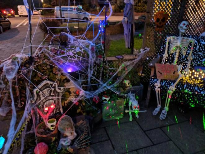 Halloween 2018 spider web