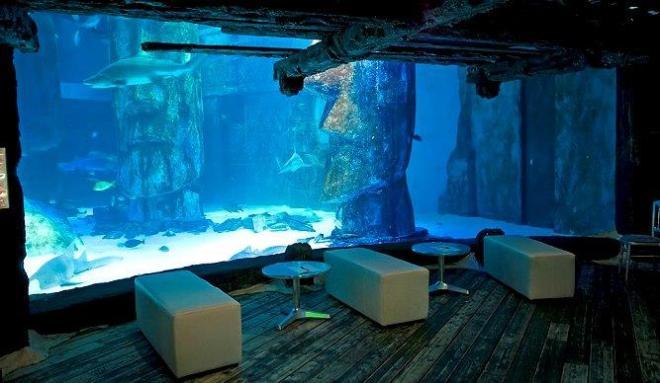 SEA LIFE Merlin Entertainments