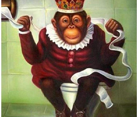 Chimp on a toilet