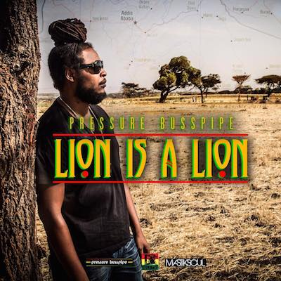 lion-is-a-lion-music-video