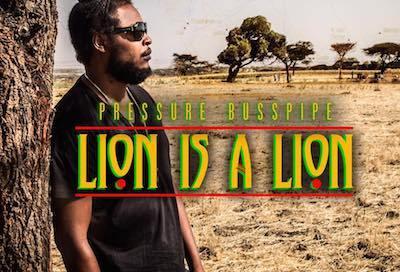 lion-is-a-lion-music-video