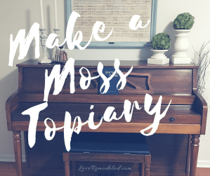 Make a Moss Covered Topiary
