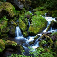 Flowing water, Watson Creek, OR