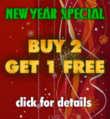 Holiday promotional banner