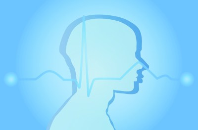 脳 イメージ