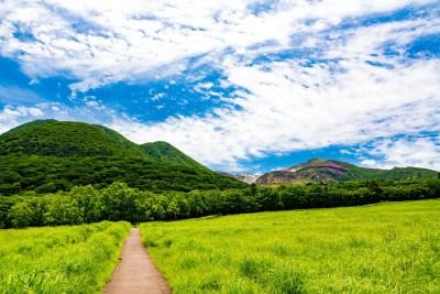 飯田高原 タデ原湿原