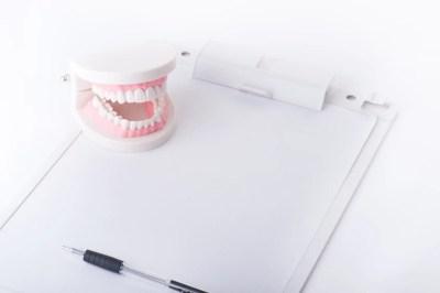 歯の模型,歯の定期検診