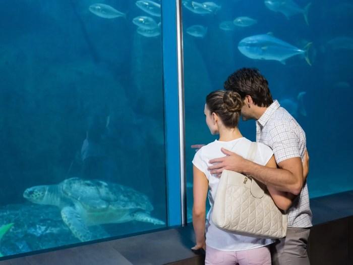 オフショルダーの服 水族館デート